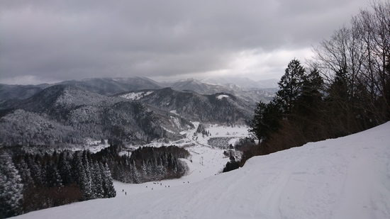 前夜の大雪のおかげ|ちくさ高原スキー場のクチコミ画像1