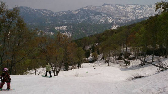 大好きシャルマン シャルマン火打スキー場のクチコミ画像2
