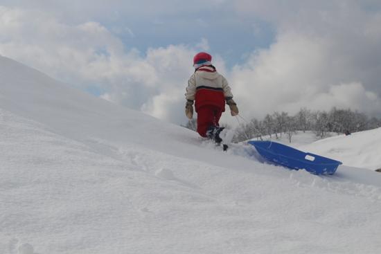 がんばります|さかえ倶楽部スキー場のクチコミ画像