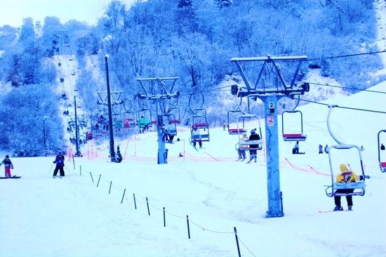 ◆下界が雨でも、ヤップは雪!連休ラストはリフト待ちなし|余呉高原リゾート・ヤップのクチコミ画像