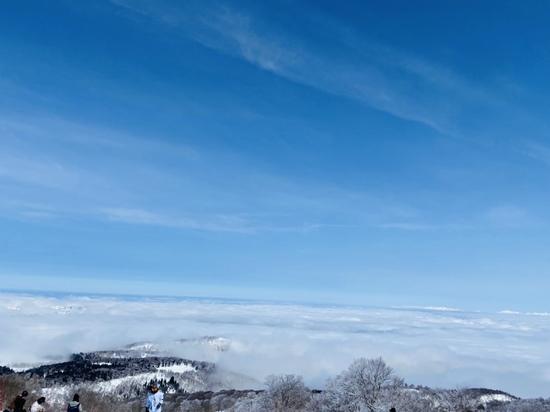 青空と雲海|野沢温泉スキー場のクチコミ画像2
