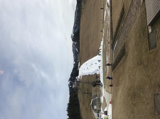 雪がありませんでした。|スキージャム勝山のクチコミ画像