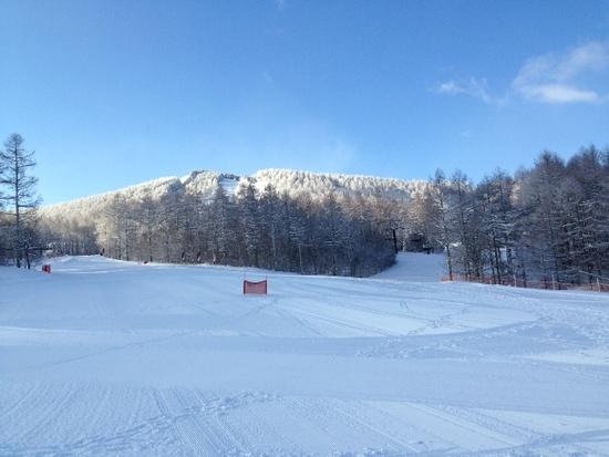 たっぷりの新雪|ブランシュたかやまスキーリゾートのクチコミ画像