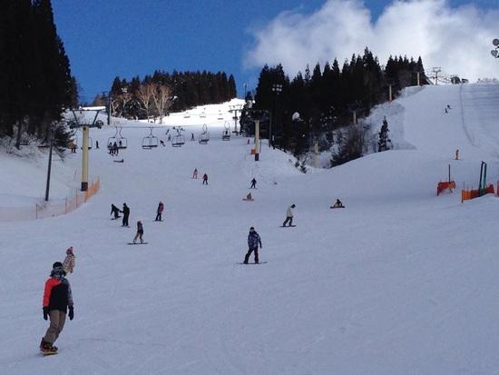 平日スキー|ホワイトピアたかすのクチコミ画像