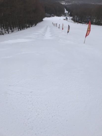 全面滑走可能|ブランシュたかやまスキーリゾートのクチコミ画像