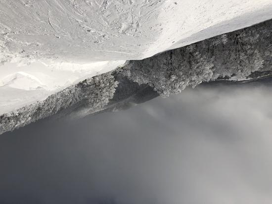 コースと雪実だけいいスキー場|星野リゾート アルツ磐梯のクチコミ画像