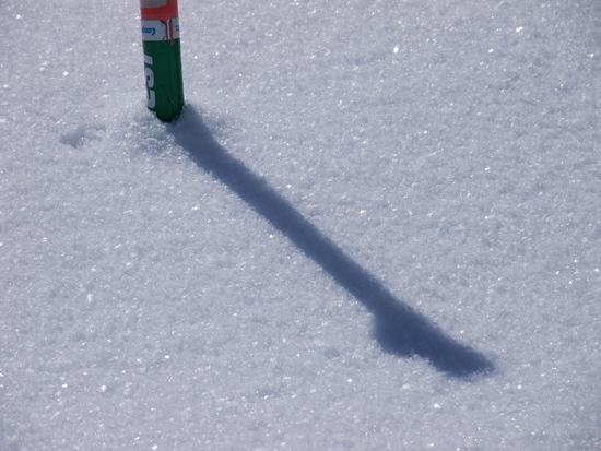 終盤といっていい時期ですが、まだ結晶が見えます。|白馬八方尾根スキー場のクチコミ画像