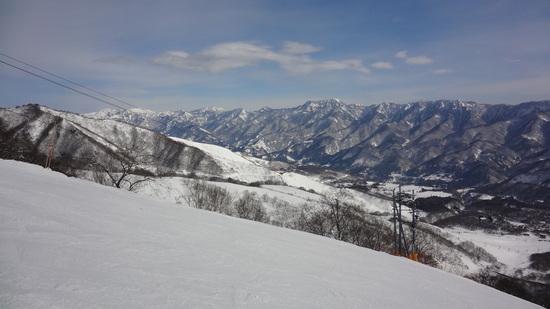 雪質サイコー!|栂池高原スキー場のクチコミ画像
