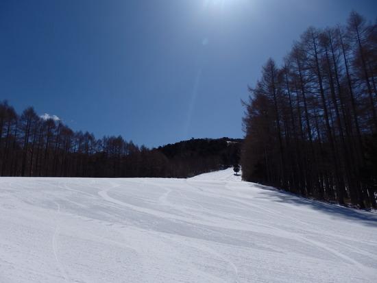 アメリカンな気分でスキー|ハンターマウンテン塩原のクチコミ画像