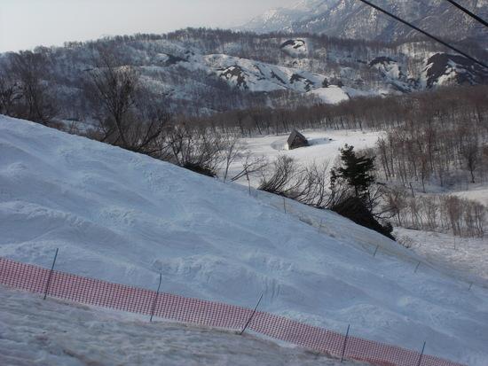 かもしかEコース 奥只見丸山スキー場のクチコミ画像