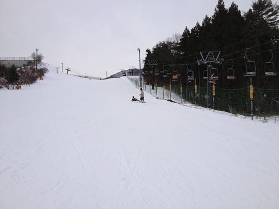 数十年ぶりのスキー|みやぎ蔵王セントメリースキー場のクチコミ画像