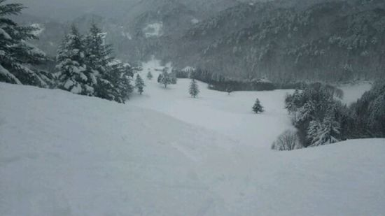 雪も多く空いてました|飛騨高山スキー場のクチコミ画像3