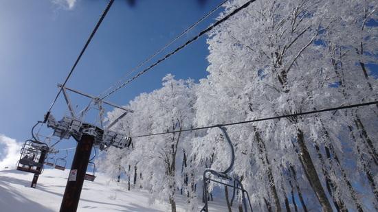 山頂のBCコース|北信州 木島平スキー場のクチコミ画像