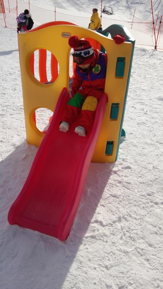 初滑り|エーデルワイススキーリゾートのクチコミ画像