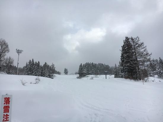 やっと滑れた〜。 上越国際スキー場のクチコミ画像