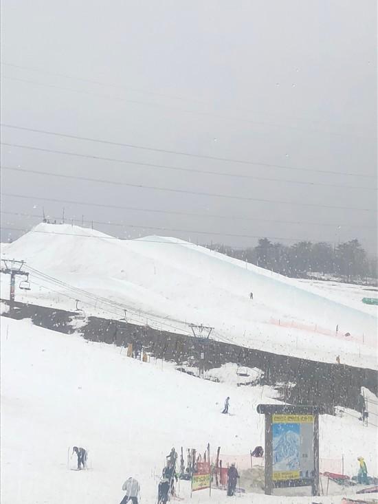 悪天候も標高が高い場所は雪!まだまだモリモリ積雪!|高鷲スノーパークのクチコミ画像3