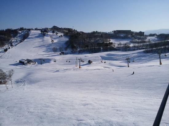 やっぱりまだまだ寂しかったです|斑尾高原スキー場のクチコミ画像