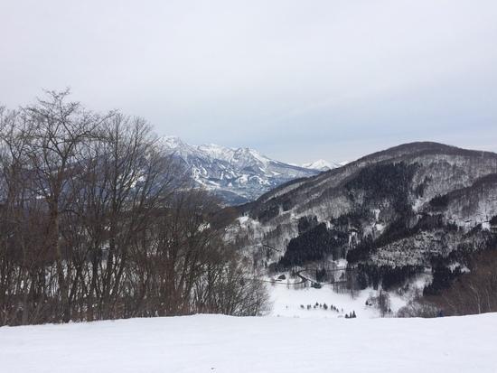 パウダーもパークも楽しめる!|斑尾高原スキー場のクチコミ画像