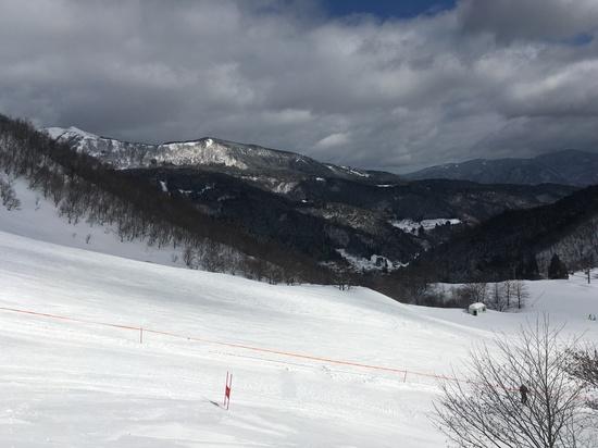 コース幅が広いです!|氷ノ山国際スキー場のクチコミ画像