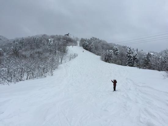 パノラマコースは面白い!|立山山麓スキー場のクチコミ画像