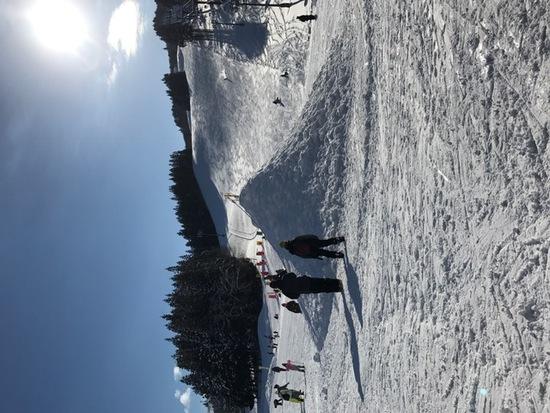 穴場的スキー場