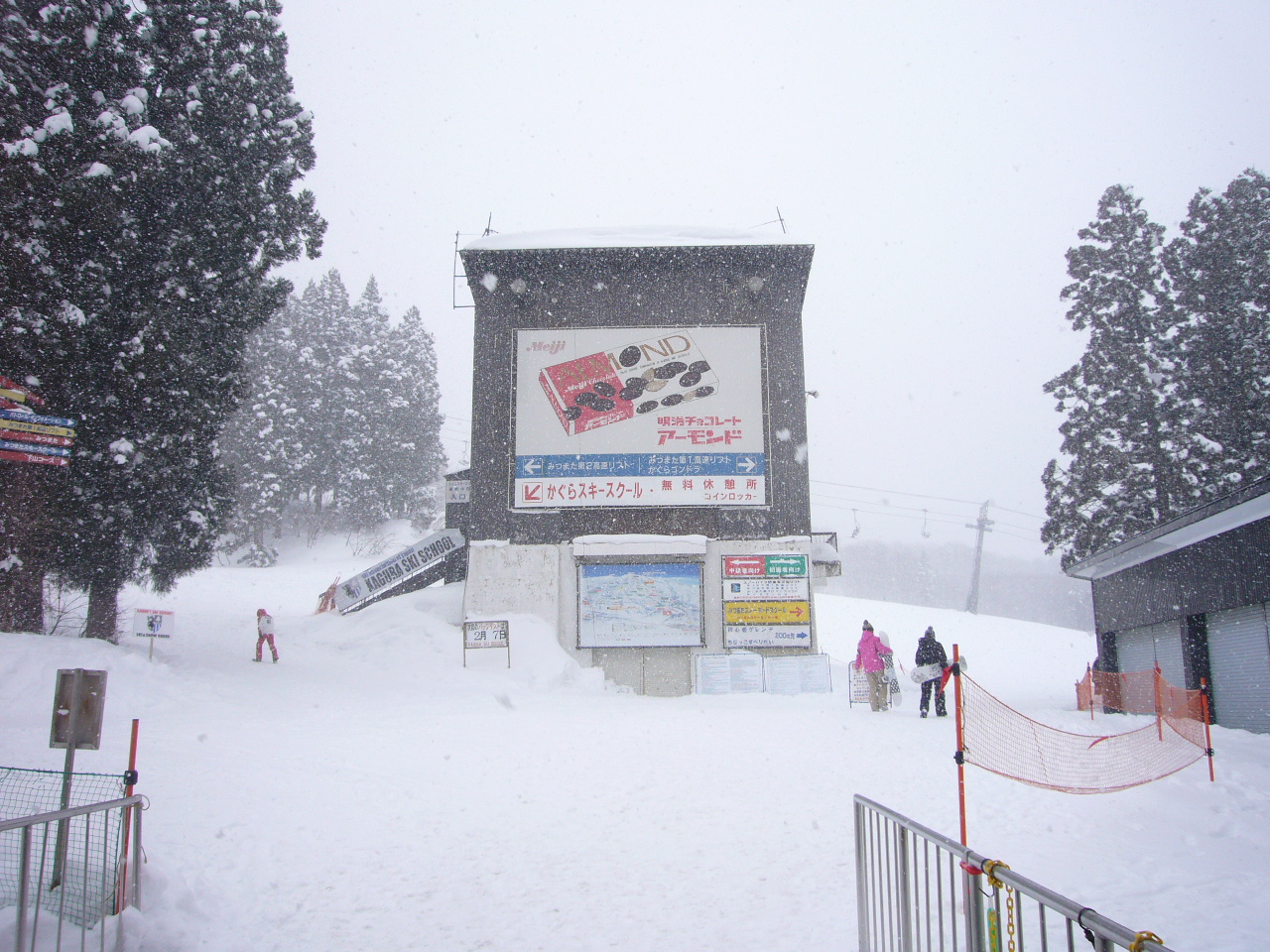 パウダー!|かぐらスキー場のクチコミ画像