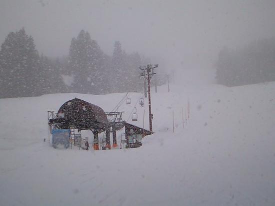 パウダーまみれ(吹雪含む)|さかえ倶楽部スキー場のクチコミ画像