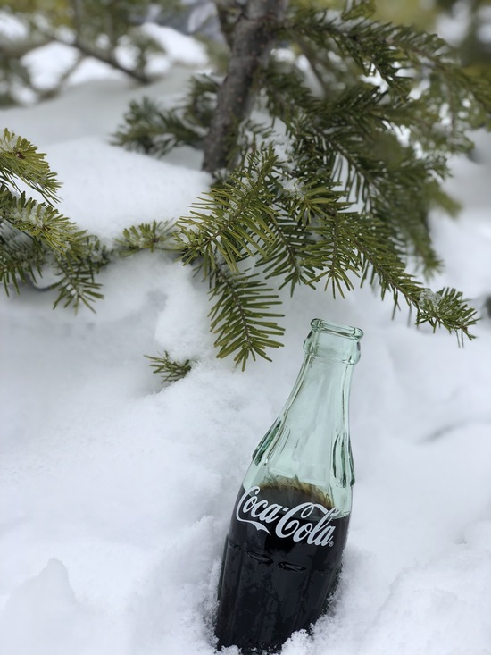 雪の中で|丸沼高原スキー場のクチコミ画像