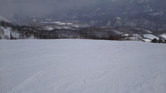 新雪が楽しいですね|オグナほたかスキー場のクチコミ画像1