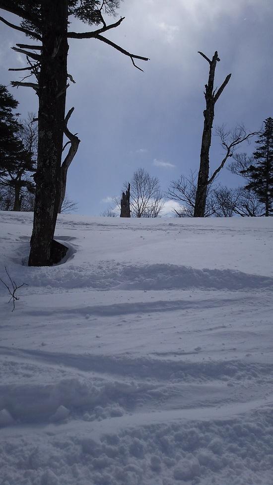 新雪が楽しいですね|オグナほたかスキー場のクチコミ画像3