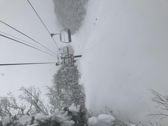 パウダー|北信州 木島平スキー場のクチコミ画像2