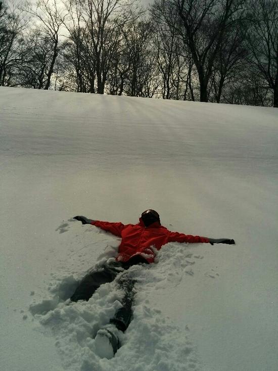 パウダースノーにダイブ|かぐらスキー場のクチコミ画像