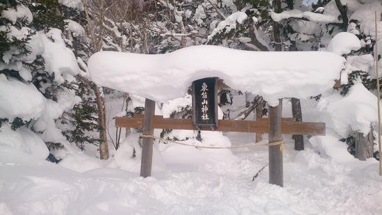 ブラボー!雪&サル♪|志賀高原リゾート中央エリア(サンバレー〜一の瀬)のクチコミ画像1