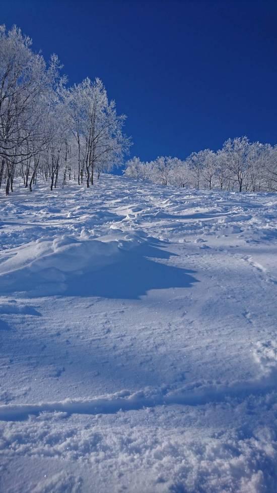来る度に、新たな魅力|斑尾高原スキー場のクチコミ画像