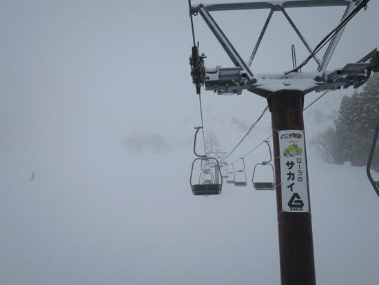 2014/01/25 長野県 戸狩温泉スキー場の速報|戸狩温泉スキー場のクチコミ画像