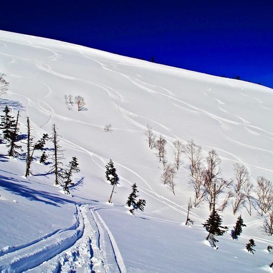 神楽峰|かぐらスキー場のクチコミ画像
