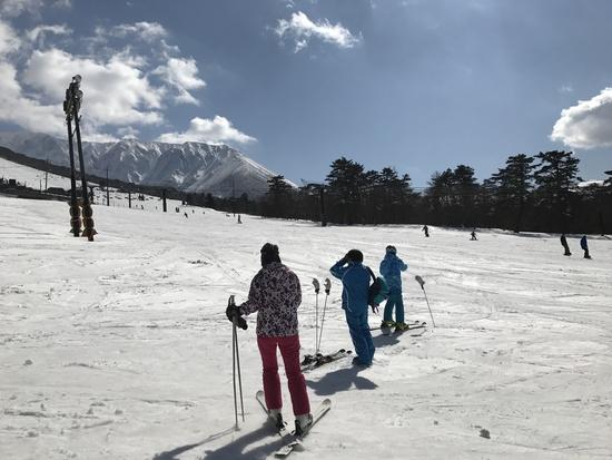 スキーどころじゃない|だいせんホワイトリゾートのクチコミ画像