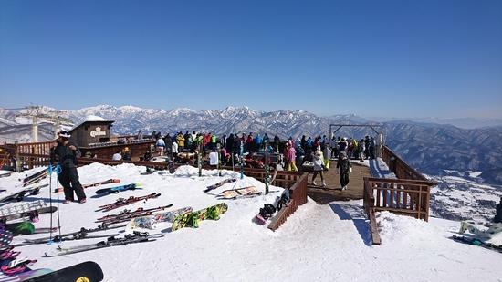 テラス最高!|白馬八方尾根スキー場のクチコミ画像