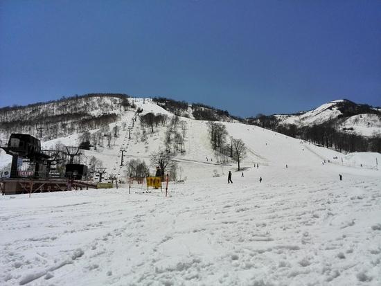 滑走期間が長く、楽しめる|かぐらスキー場のクチコミ画像