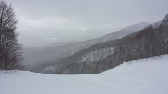 パウダー三昧|会津高原だいくらスキー場のクチコミ画像2