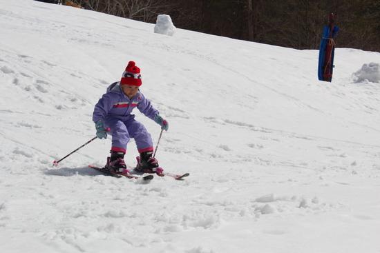 初心者子供にも最適|箕輪スキー場のクチコミ画像
