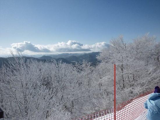 真冬の朝に花見|軽井沢プリンスホテルスキー場のクチコミ画像2