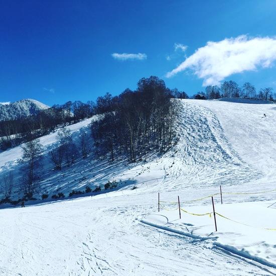ミニ白馬 飛騨ほおのき平スキー場のクチコミ画像