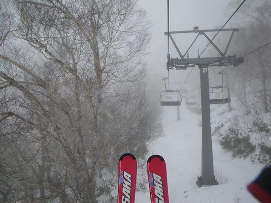 こ、こんなにたくさん!|川場スキー場のクチコミ画像