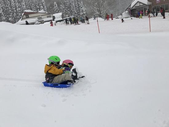 雪、降りすぎでしたが、楽しかったです|おじろスキー場のクチコミ画像