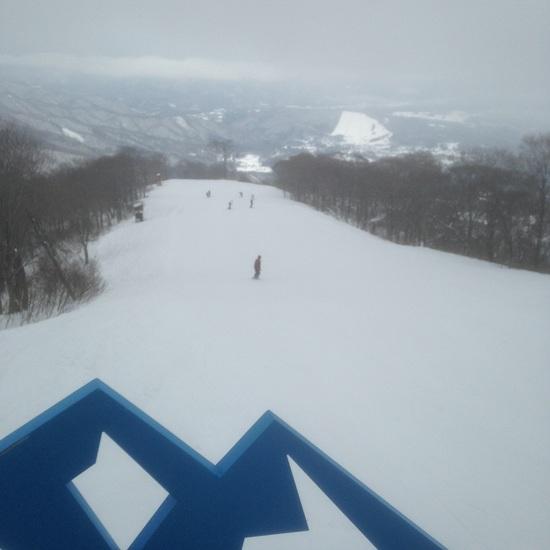 圧雪のち新雪|高鷲スノーパークのクチコミ画像