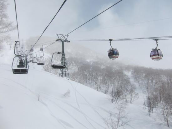 2013/03/02 (土) 北海道ニセコアンヌプリの速報|ニセコアンヌプリ国際スキー場のクチコミ画像