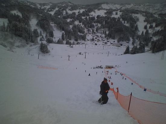 のんびり 松之山温泉スキー場のクチコミ画像