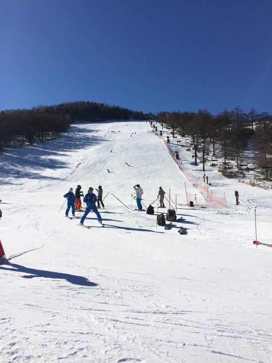 春スキーみたい