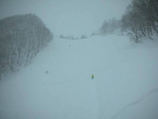 新雪がいっぱい|水上高原スキーリゾートのクチコミ画像